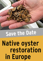 Save the Date - Kick-off workshop - Native oyster restoration in Europe